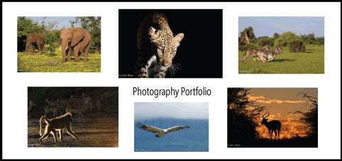 Photo-Portfolio